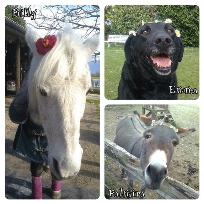 Buona pasqua da Emma, Palmira e Billy